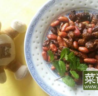 花生米爆蚕蛹