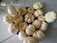 四川泡菜的做法步骤5