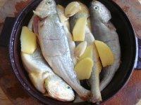 干煎小黄鱼的做法步骤4