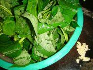 蒜香红薯叶的做法步骤2