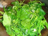 蒜香红薯叶的做法步骤4