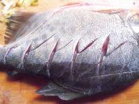 红烧武昌鱼——美味下酒菜的做法步骤2