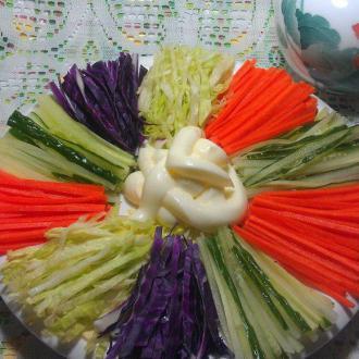 蔬菜沙拉拼盘