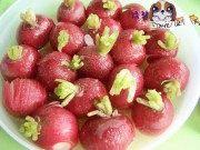 糖渍樱桃萝卜的做法步骤5