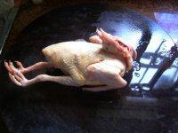 淮山虫草白鸽炖汤的做法步骤3