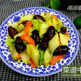 白菜炒茧蛹