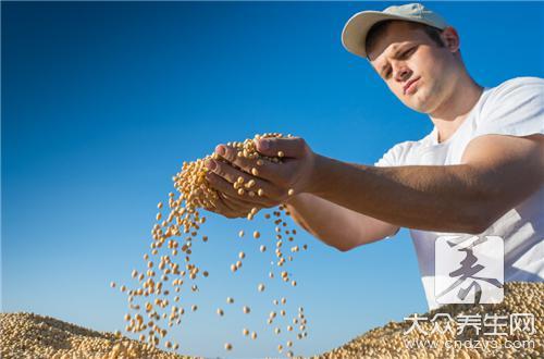 黄豆面的功效与作用
