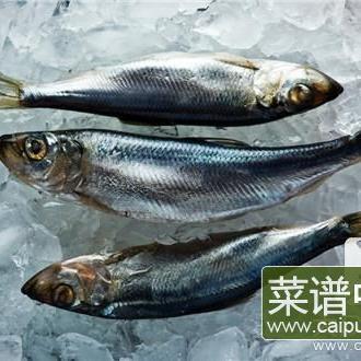 鲶鱼为什么不能吃呢