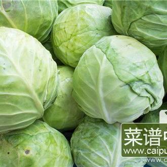 白菜拌干豆腐
