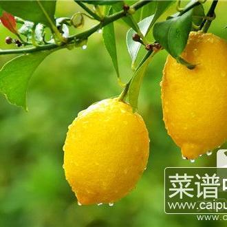 柠檬加醋能减肥吗