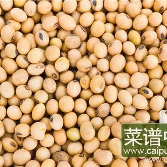 大豆是蚕豆吗
