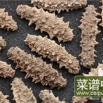 海参熬粥的做法是什么?