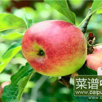 苹果和地瓜能一起吃吗