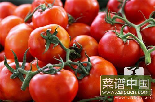 激素西红柿